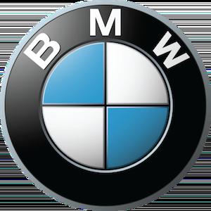 Пороги BMW